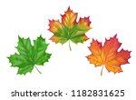 vector illustration stages... | Shutterstock .eps vector #1182831625