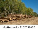 the felled trees folded near... | Shutterstock . vector #1182852682