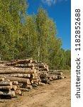 the felled trees folded near... | Shutterstock . vector #1182852688