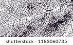 grunge black and white vector... | Shutterstock .eps vector #1183060735