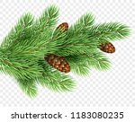 fir tree branch realistic... | Shutterstock .eps vector #1183080235
