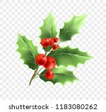 christmas holly twig realistic... | Shutterstock .eps vector #1183080262