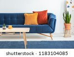 orange and red cushions on a... | Shutterstock . vector #1183104085