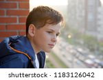 the little boy looks with... | Shutterstock . vector #1183126042