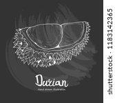 durian vector illustration.... | Shutterstock .eps vector #1183142365