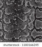 snake skin  pattern  texture... | Shutterstock .eps vector #1183166245