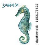 watercolor seahorse isolated on ... | Shutterstock . vector #1183179622