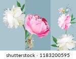 a picturesque peony flower.... | Shutterstock .eps vector #1183200595