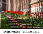 a lot of fresh flowers on the... | Shutterstock . vector #1183253818