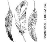 vector bird feather from wing... | Shutterstock .eps vector #1183265752