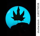 Leaves Moon Silhouette Halloween - Fine Art prints