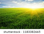 green field blue sky and sun.  | Shutterstock . vector #1183382665