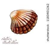 sea shell realistic 3d... | Shutterstock .eps vector #1183401262