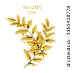 autumn watercolor leaves vector ...   Shutterstock .eps vector #1183428778