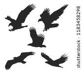 Eagle Icons Set   Black Bird  ...