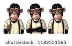 Monkey Businessman Dressed In...