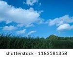 green field under blue sky with ... | Shutterstock . vector #1183581358