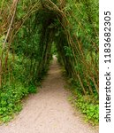 natural covered walking path in ... | Shutterstock . vector #1183682305