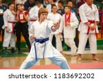 guy karate does kata at the... | Shutterstock . vector #1183692202