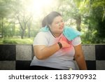 picture of fat woman having... | Shutterstock . vector #1183790932