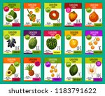 exotic fruits price cards  farm ... | Shutterstock .eps vector #1183791622