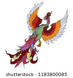 hand drawn chinese peacock... | Shutterstock .eps vector #1183800085