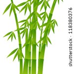 illustration with bamboo on... | Shutterstock .eps vector #118380376