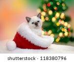 Little Kitten Sitting In Santa...
