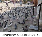 chiang mai  thailand march 2018 ...   Shutterstock . vector #1183812415