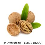 walnuts isolated on white... | Shutterstock . vector #1183818202