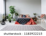 armchair next to red bed with... | Shutterstock . vector #1183922215