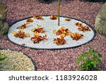 landscape decorative in the yard | Shutterstock . vector #1183926028
