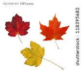 Vector Image Of Colorful Fall...