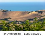 panoramic view of olive groves... | Shutterstock . vector #1183986292