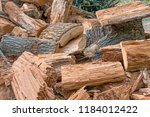 pile of old rotten stumps of... | Shutterstock . vector #1184012422