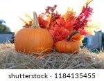 Pumpkins And Flower...