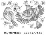 coloring pages. coloring book... | Shutterstock .eps vector #1184177668