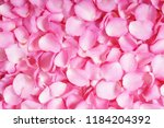 Stock photo pink rose petals background 1184204392