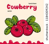 cowberry vector illustration ... | Shutterstock .eps vector #1184309242