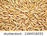 macro shot of oats  organic ... | Shutterstock . vector #1184518252