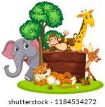 Wild Animals With Wooden Board...