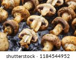 barbecue skewers with delicious ... | Shutterstock . vector #1184544952