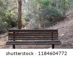 the bench is standing in the... | Shutterstock . vector #1184604772