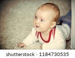 infant crawl on floor carpet.... | Shutterstock . vector #1184730535