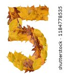 number from autumn leaves  | Shutterstock . vector #1184778535