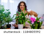 young businesswoman sprays... | Shutterstock . vector #1184805592