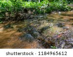 a small waterway. | Shutterstock . vector #1184965612
