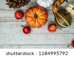fall scene with various... | Shutterstock . vector #1184995792