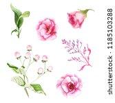 watercolor drawings of summer... | Shutterstock . vector #1185103288