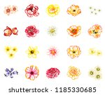 flowers set. collection of... | Shutterstock .eps vector #1185330685